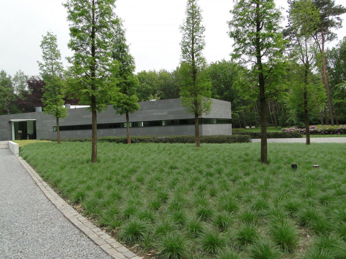 Grote Moderne Tuin : Moderne grote tuin walhalla