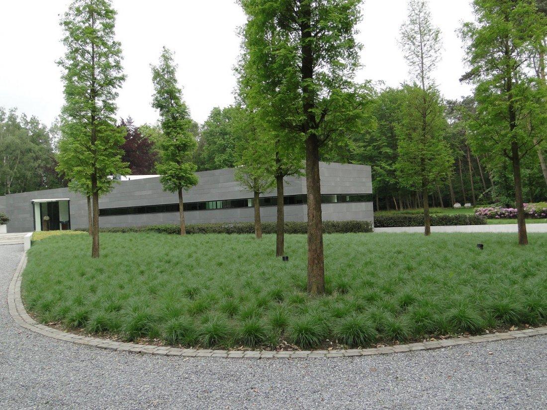 Grote Moderne Tuin : Moderne grote tuin walhalla.com