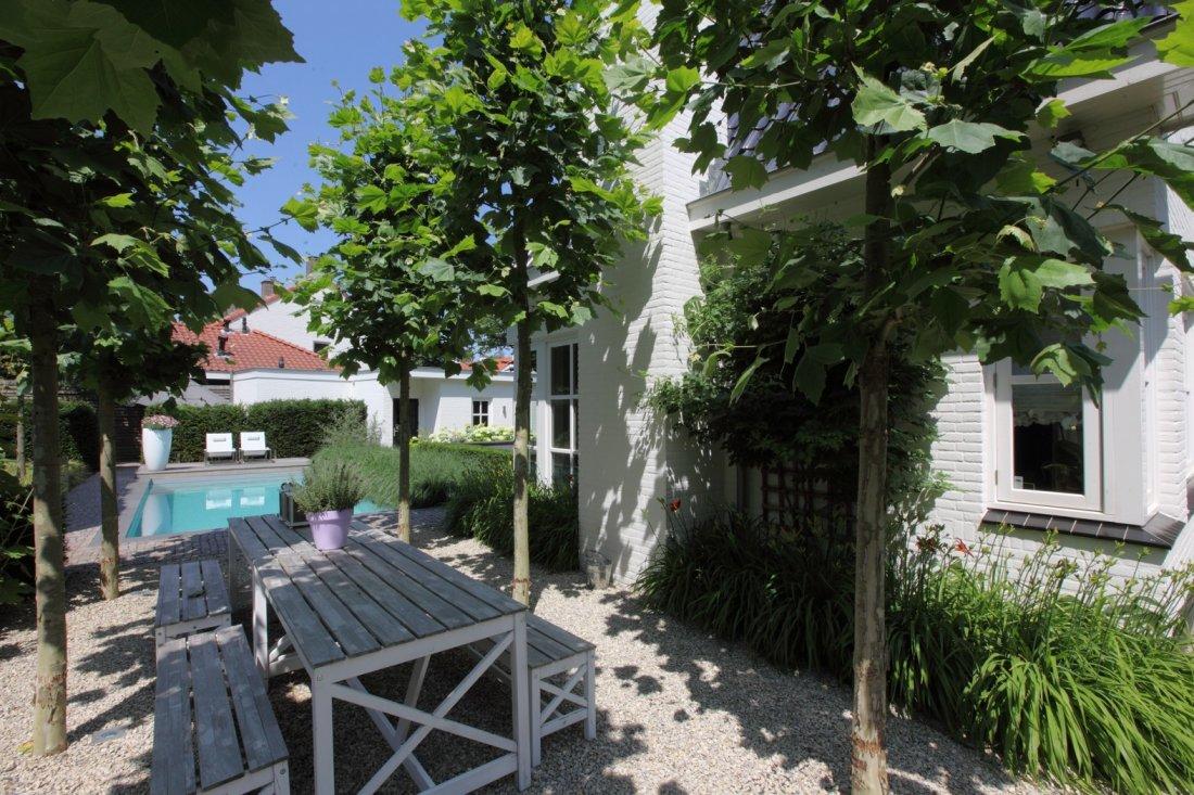 Moderne tuin met zwembad en koivijver - Moderne tuinfoto ...