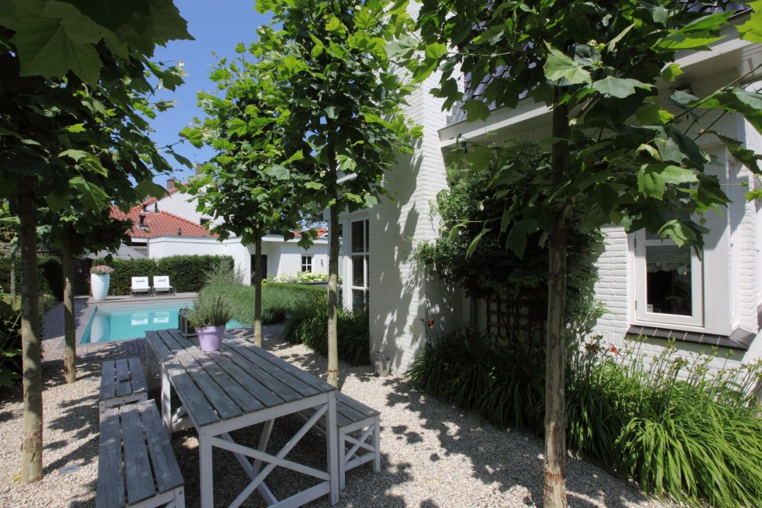 Moderne tuin met zwembad en koivijver - Moderne tuin foto ...