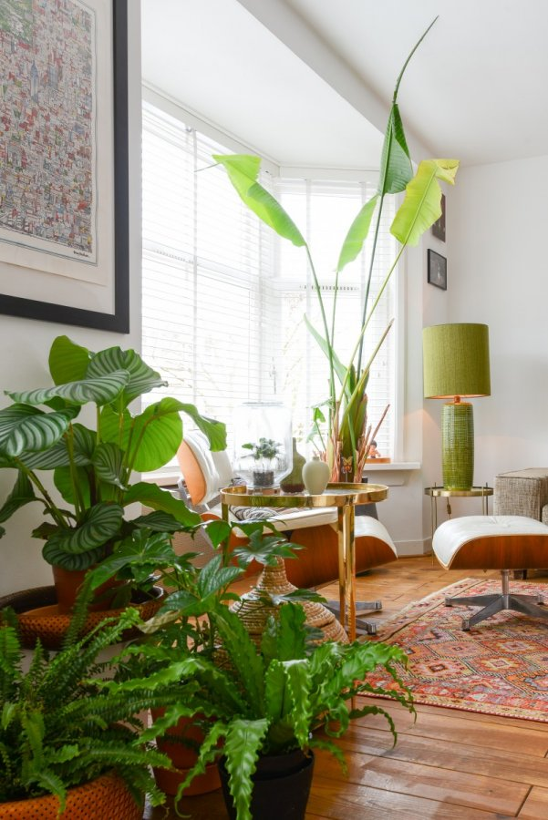 Styling project - Amsterdam meets the tropics - Brazilian vibe
